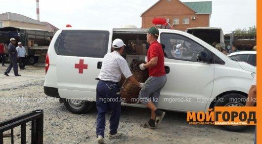 Перевозку баранов в машине