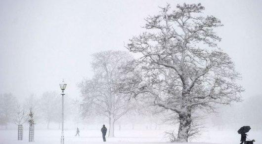 Предстоящая зима вевропейских странах будет самой холодной запоследние сто лет— Ученые
