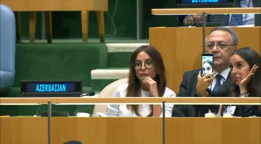 Азербайджан призвал страны ОИС ограничить все виды сотрудничества сАрменией