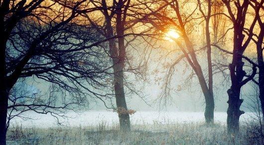 Иллюстративное фото: brumbrum.ru