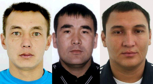 Смерть защитника сайги: Подозреваемые в убийстве задержаны