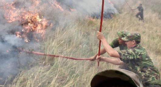 У погибшего при пожаре в Алматинской области остались 5 детей