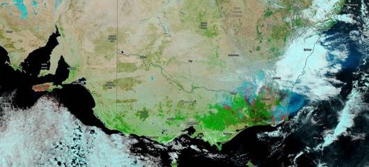 Как пожары в Австралии повлияли на атмосферу, показали в NASA - Схема пожаров в восточной Австралии / © NASA Worldview