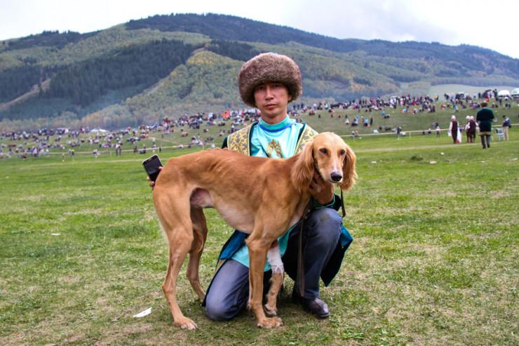 """""""Итбегілік"""" хотят признать официальным видом спорта в Казахстане"""