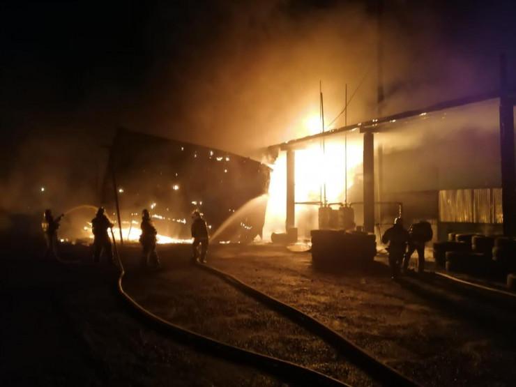 ЧП на заводе в Талдыкоргане: пострадали три человека